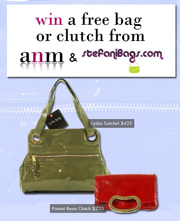 Win A Free Bag Or Clutch From ANM and Stefanibags.com! | a new mode :  linea pelle clutch bags ananas