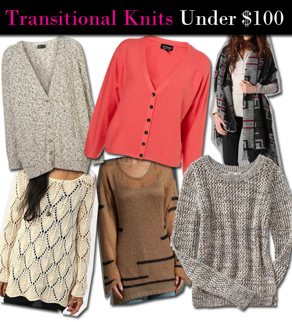 ANM Must-Have: Transitional Knits Under $100 post image