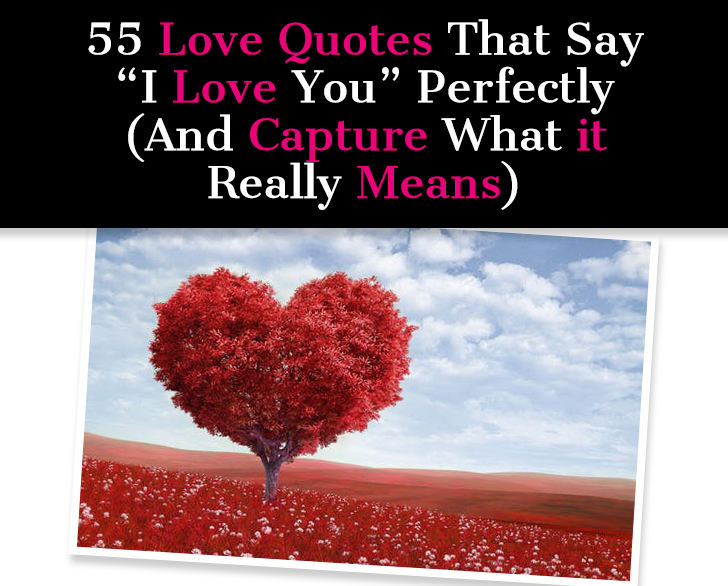 55 Love Quotes That Say 'I Love You' Perfectly (And Capture What It Really Means) post image